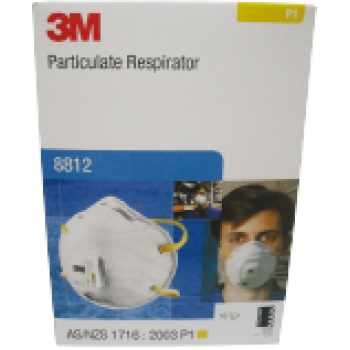 Dust Masks 8812