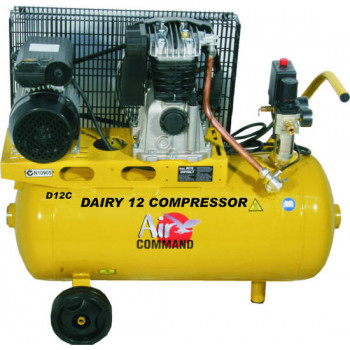 Air Command Dual Control 12 Compressor